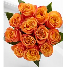 Adventure Rose Bouquet - 12 Stems of 40 cm  Roses - No Vase