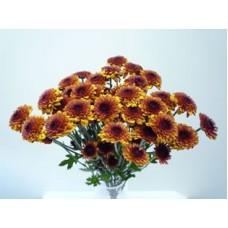 Chrysanthemum Spray Button Bronze – 3 Bunches $38.99 - (Each Bunch $12.99)