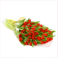 Bouquet of 10 Stems Red Tulips
