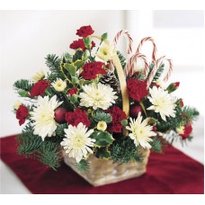 Candy Cane Lane Bouquet - Christmas