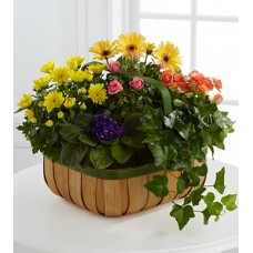 Happy Birthday Gardening Basket