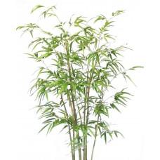 6' Bamboo Tree - Artificial