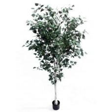 7' Birch Tree - Artificial