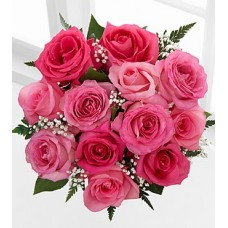 Dozen Pink Roses - 40 cm No Vase
