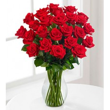 24 Red Roses - VASE INCLUDED
