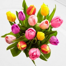 Rush of Color Assorted Tulip Bouquet - 10 Stems - NO VASE