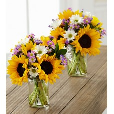 Sunflower Fields Petite Bouquet Trio
