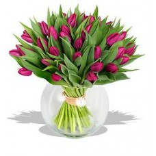 20 Stems Tulips with FREE Vase