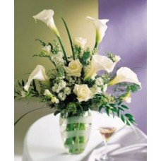 Calla Lily Flowers and More