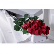 12 Long Stem Roses Boxed