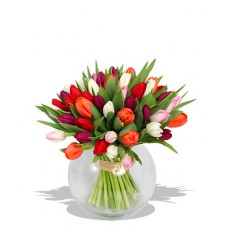 20 Stems Mix Colour Tulips with FREE Vase