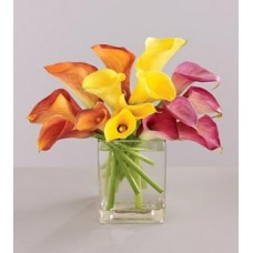 Mixed Colour Lilies with FREE Vase