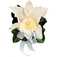 Japhet Orchid Corsage