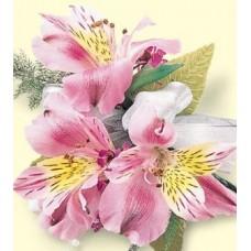 Alstroemeria Blossoms Corsage