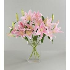 Pink Liliy Flowers in Vase