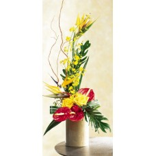 Tropical Exotic Arrangement