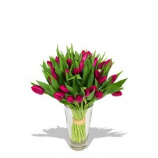 Tulip Wonderland with FREE Vase