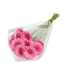 10 Stem Pink Gerbera Daisy Bouquet