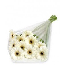 10 Stem White Gerbera Daisy Bouquet