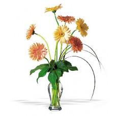 Grand Gerberas Flowers