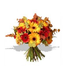 Flowers - Colour of Autumn