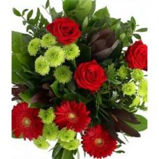 Glorious Roses and Gerbera Daisies - Cut Flowers