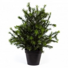 "25"" Hicks Yew Bush Silk Plant"
