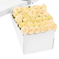 3 Dozen Cream White Roses in a Box